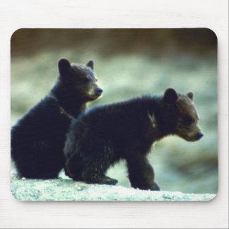Cachorros de oso negro mouse pads