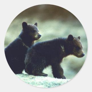Cachorros de oso negro pegatina redonda