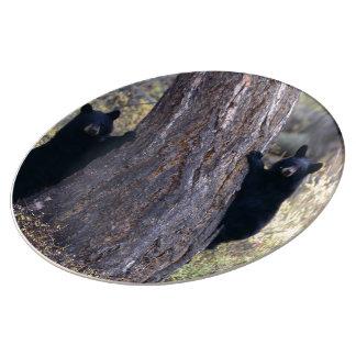 cachorros de oso negro platos de cerámica