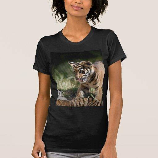 Cachorros de tigre camisetas