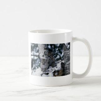 cachorros Puma-jovenes en árbol nevoso Tazas De Café