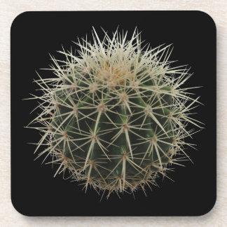 Cacti Cactus Spiky Coaster