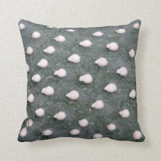 Cacti Detail Photo Throw Cushion 41 cm x 41 cm