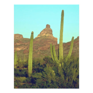 Cacti In Hottest Regions Flyer