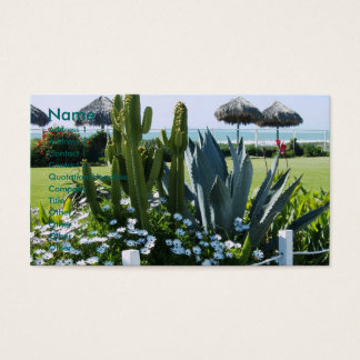 Cacti in Mexico Business Card