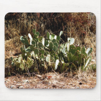 Cacti Mouse Pads