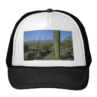 Cacti Stands Trucker Hat