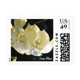 Cacti Yucca Bloom Postage Stamp