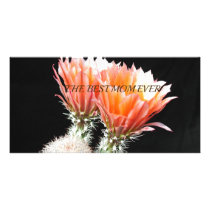 Cactus54 Card