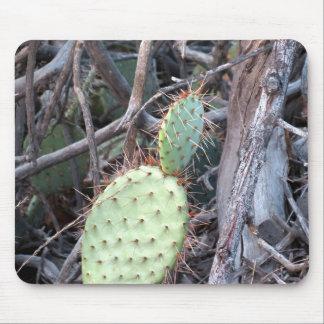 Cactus 2 mousepads