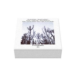 cactus 3D en blanco y negro Impresión En Lienzo