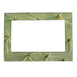 "Cactus 5x7"" Magnetic Frame (For 4x6"" Photo)"