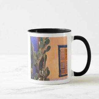 Cactus al sudoeste (dejecta de la Opuntia) y