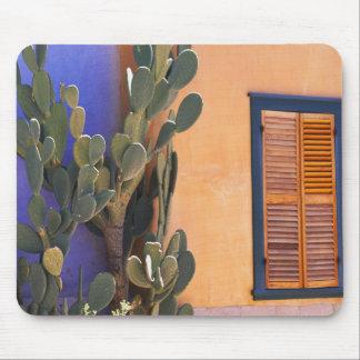 Cactus al sudoeste (dejecta de la Opuntia) y Alfombrilla De Ratón