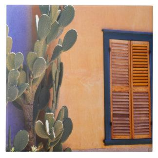 Cactus al sudoeste (dejecta de la Opuntia) y Azulejo Cuadrado Grande