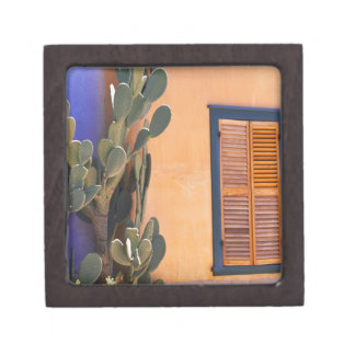 Cactus al sudoeste (dejecta de la Opuntia) y Cajas De Recuerdo De Calidad