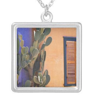 Cactus al sudoeste (dejecta de la Opuntia) y Collar Plateado