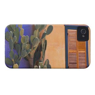 Cactus al sudoeste (dejecta de la Opuntia) y Funda Para iPhone 4 De Case-Mate