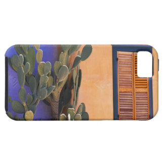Cactus al sudoeste (dejecta de la Opuntia) y Funda Para iPhone SE/5/5s