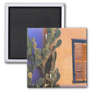 Cactus al sudoeste (dejecta de la Opuntia) y Imán Cuadrado