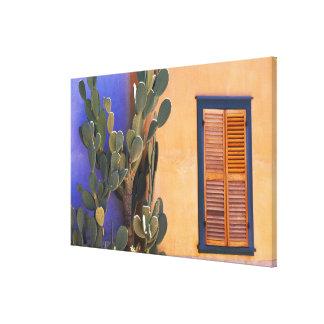 Cactus al sudoeste (dejecta de la Opuntia) y Impresión En Lienzo