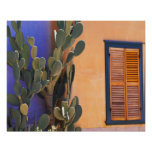 Cactus al sudoeste (dejecta de la Opuntia) y Poster