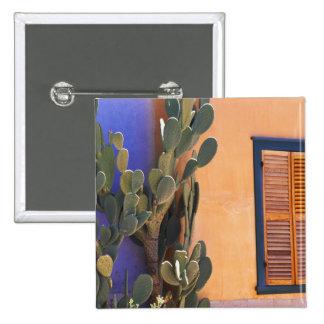 Cactus al sudoeste (dejecta de la Opuntia) y Pin Cuadrado