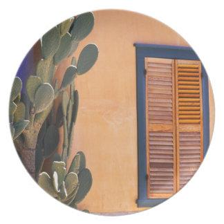 Cactus al sudoeste (dejecta de la Opuntia) y Platos De Comidas