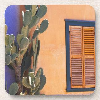 Cactus al sudoeste (dejecta de la Opuntia) y Posavasos