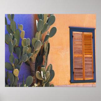 Cactus al sudoeste (dejecta de la Opuntia) y Póster