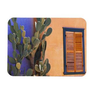 Cactus al sudoeste (dejecta de la Opuntia) y Rectangle Magnet