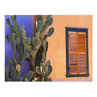 Cactus al sudoeste (dejecta de la Opuntia) y Tarjeta Postal