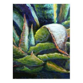 Cactus americano del agavo del desierto por tarjetas postales