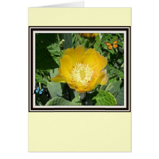 Cactus and Butterflies Card