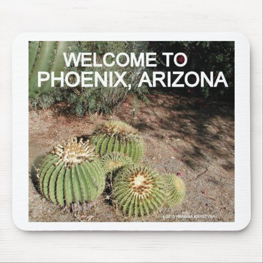 CACTUS AND FLOWERS IN PHOENIX ARIZONA MOUSE PAD