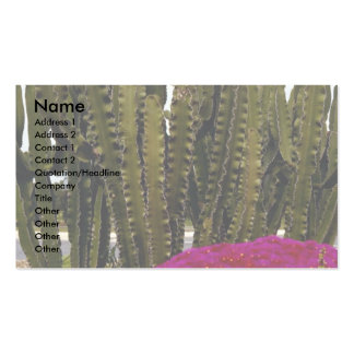 Cactus and tropical flowers Desert Double-Sided Standard Business Cards (Pack Of 100)
