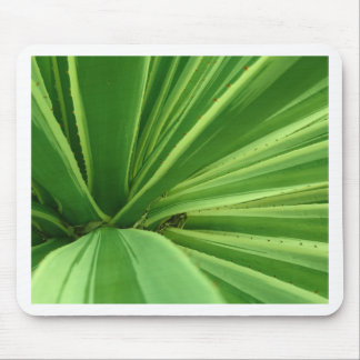 Cactus Approach Mouse Pad