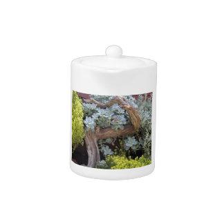 Cactus arrangement teapot