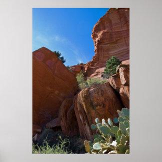 Cactus at Palatki Rocks 3312 Poster