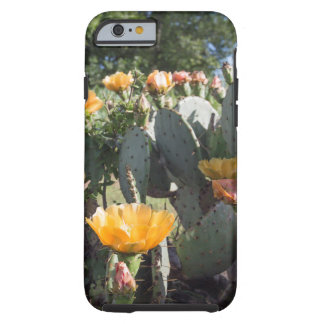 Cactus at the fort tough iPhone 6 case