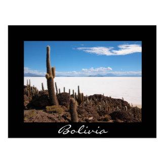 Cactus at the Salar de Uyuni black border postcard