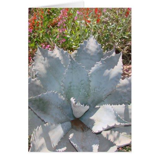 Cactus azul tarjeta de felicitación