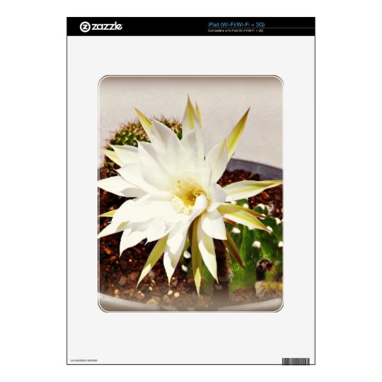 Cactus Bloom Decal For The iPad