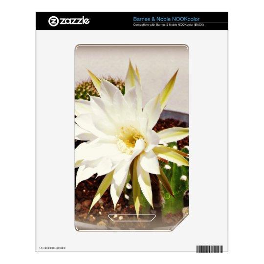 Cactus Bloom NOOK Color Decals