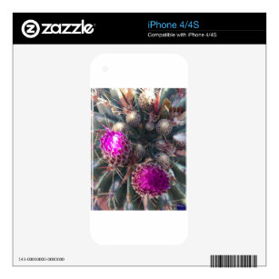 Cactus blossom decal for iPhone 4