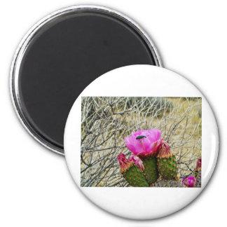 Cactus Blossum 2 Inch Round Magnet