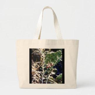 Cactus Bolsa