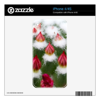 Cactus buds decal for iPhone 4