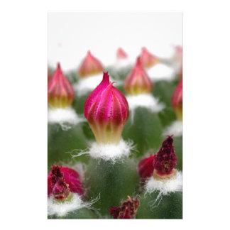 Cactus buds stationery