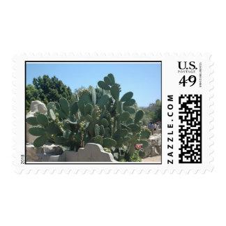 Cactus/Cacti Postage